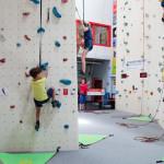 climbing-challenge-aranea-800px